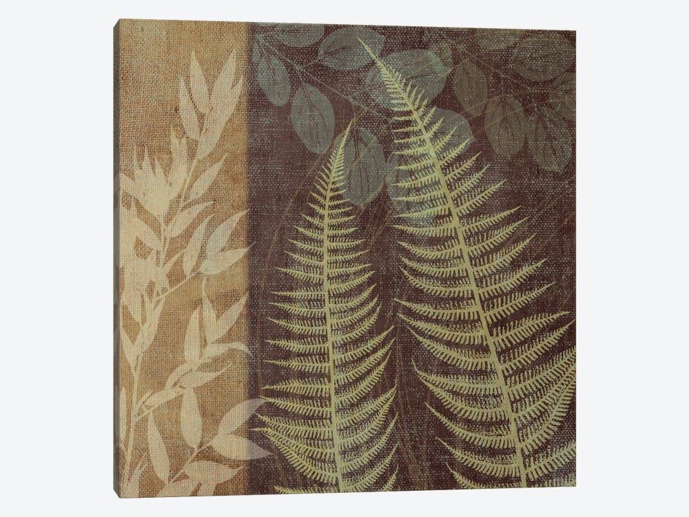 Ferns I by Erin Clark 1-piece Canvas Wall Art