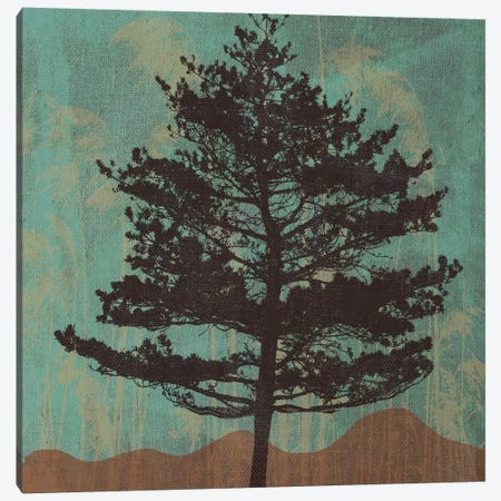 Evergreen Canvas Print #13325} by Erin Clark Canvas Wall Art
