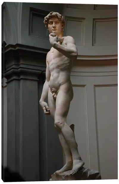 David by Michelangelo Canvas Art Print