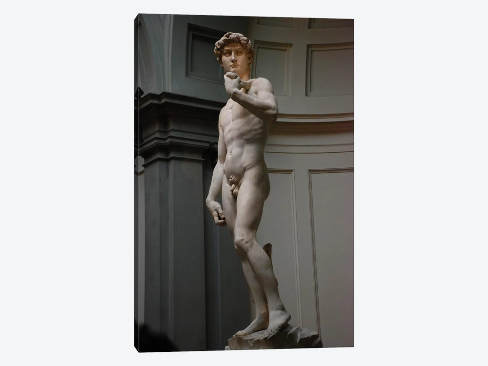 David by Michelangelo 1-piece Canvas Artwork