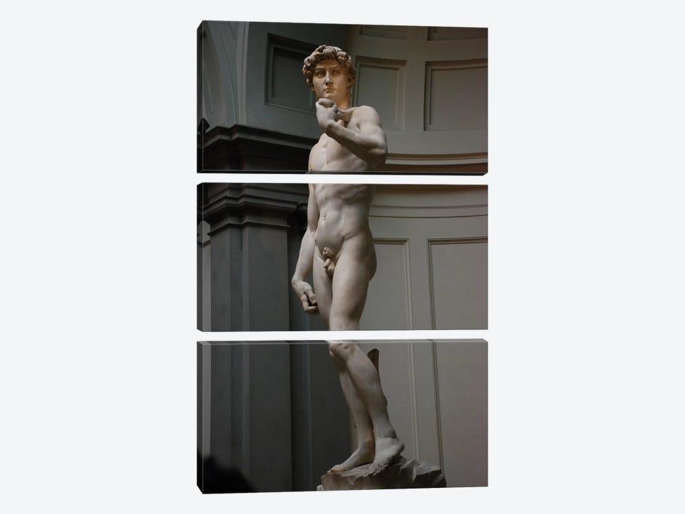 David by Michelangelo 3-piece Canvas Wall Art