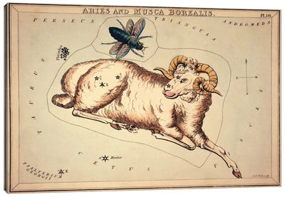 Aries and Musca Borealis, 1825 by Sidney Hall Canvas Art