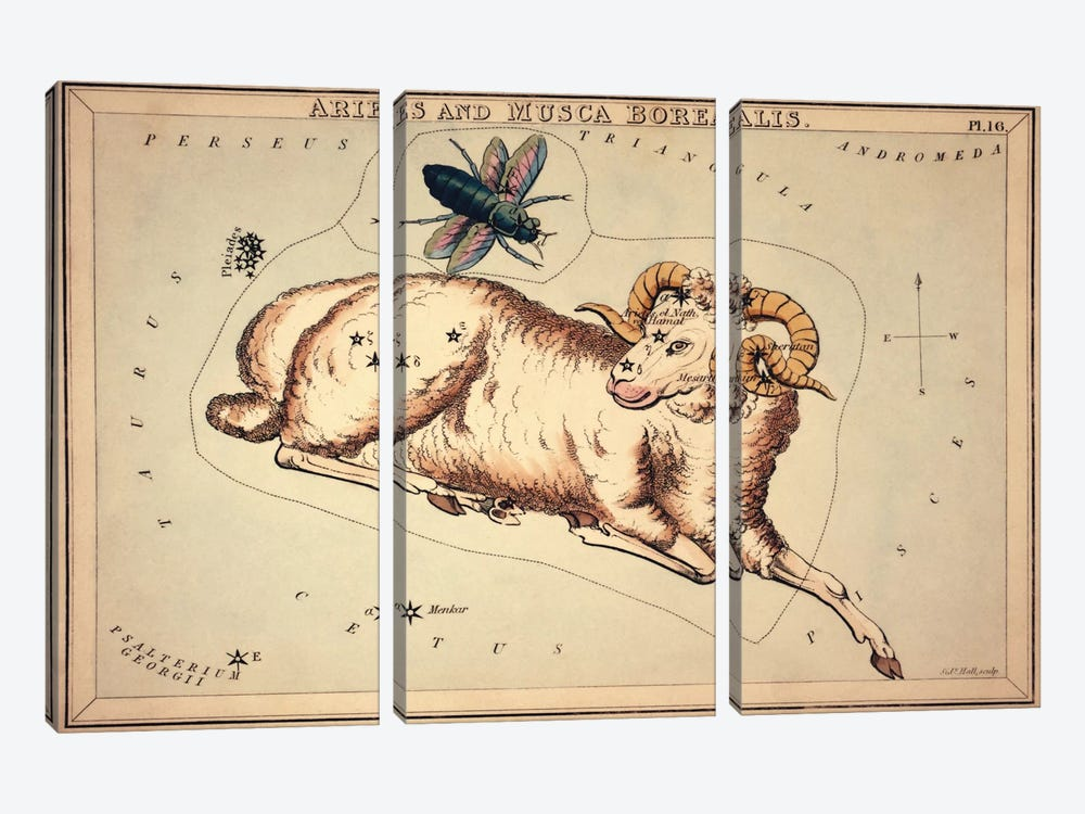 Aries and Musca Borealis, 1825 by Sidney Hall 3-piece Canvas Print