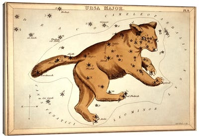 Ursa Major ll Canvas Art Print