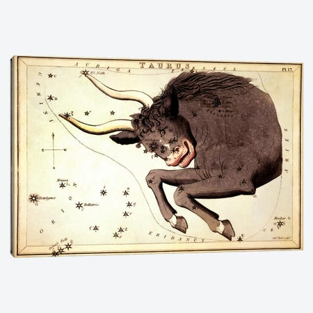 Taurus Constellation ll Canvas Print #13422} by Sidney Hall Canvas Art