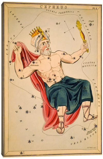 Cepheus Canvas Art Print