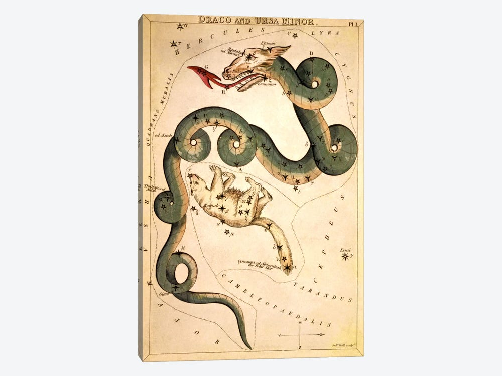 Draco and Ursa Minor by Sidney Hall 1-piece Canvas Art Print