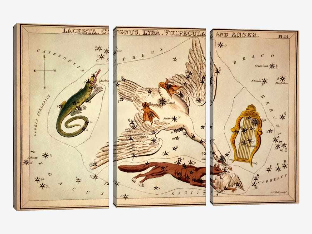 Lacerta, Cygnus, Lyra, Vulpecula and Anser by Sidney Hall 3-piece Canvas Art