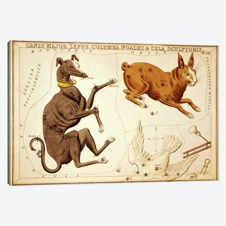 Canis Major, Lepus, Columba Noachi, and Cela Sculptoris Canvas Print #13432} by Sidney Hall Canvas Print