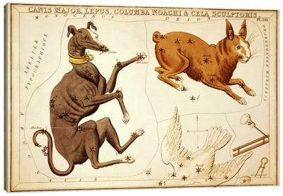 Canis Major, Lepus, Columba Noachi, and Cela Sculptoris Canvas Art Print