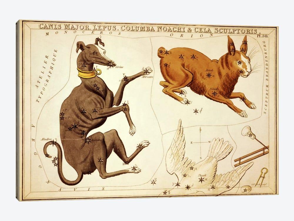 Canis Major, Lepus, Columba Noachi, and Cela Sculptoris by Sidney Hall 1-piece Canvas Artwork