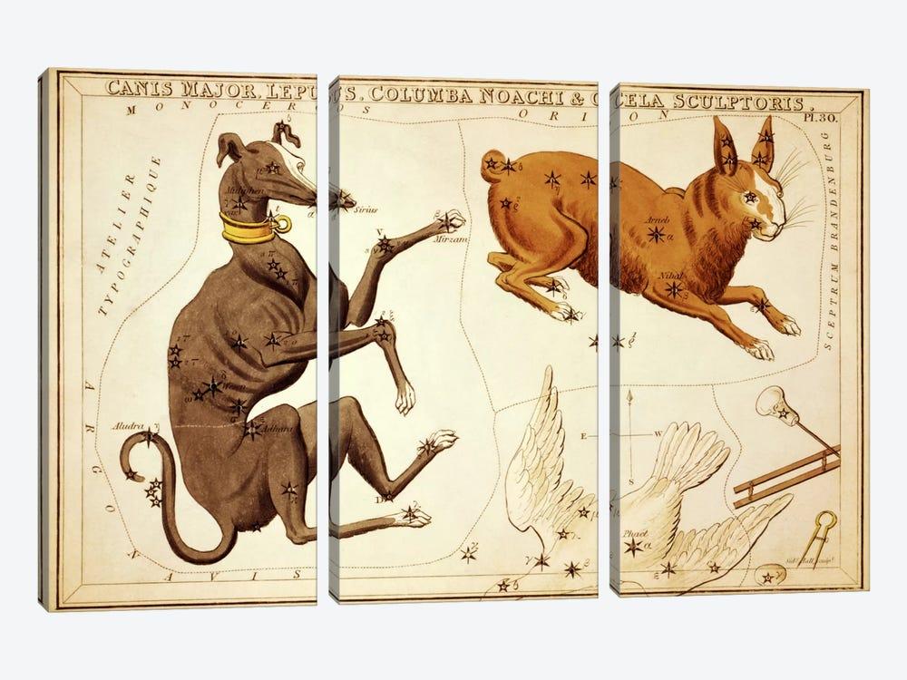 Canis Major, Lepus, Columba Noachi, and Cela Sculptoris by Sidney Hall 3-piece Canvas Artwork