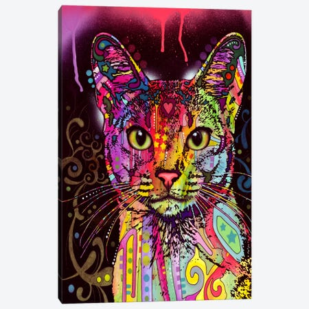 Abyssinian Canvas Print #13526} by Dean Russo Canvas Art