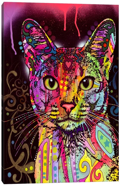 Abyssinian Canvas Print #13526