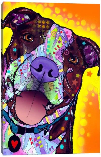 Daisy Pit Canvas Art Print
