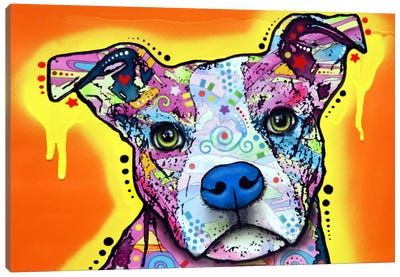 Serious Pit Canvas Art Print