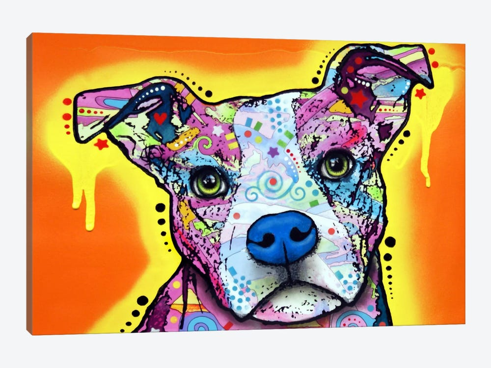 Serious Pit by Dean Russo 1-piece Canvas Wall Art