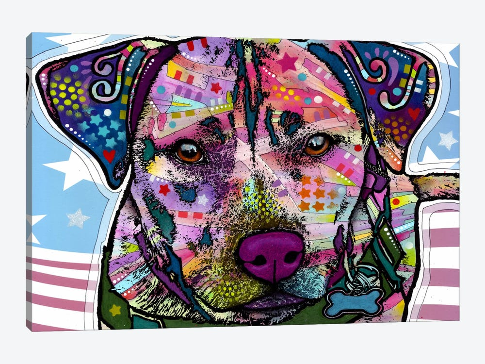 Dakota by Dean Russo 1-piece Canvas Wall Art