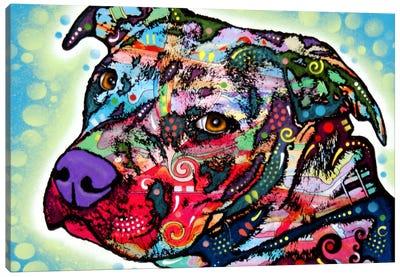 Bulls Eye Canvas Art Print