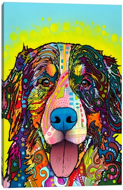 Bernese Mountain Dog by Dean Russo Canvas Art