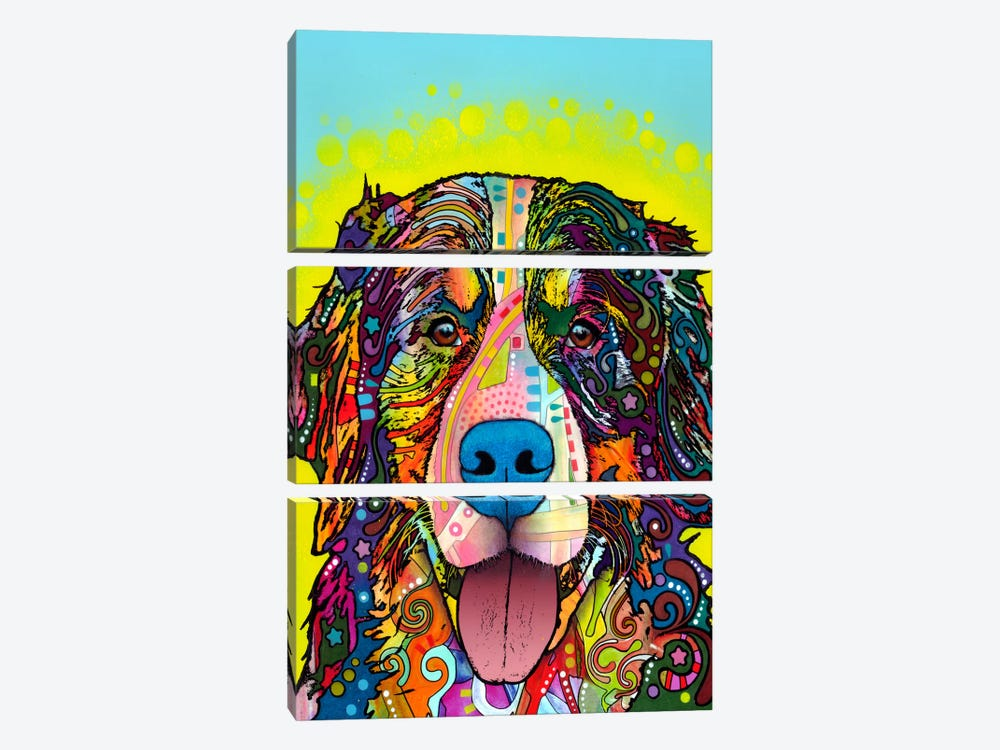 Bernese Mountain Dog by Dean Russo 3-piece Canvas Art