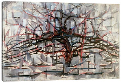 Tree, 1911 Canvas Print #13590