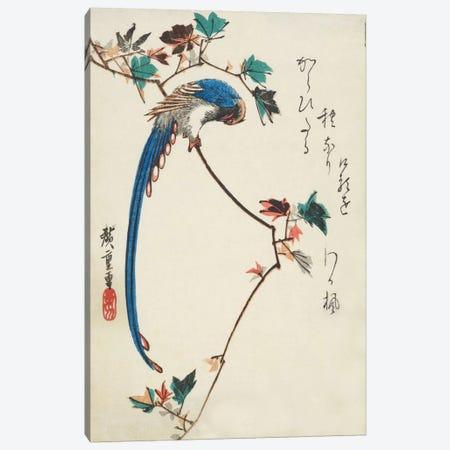 Blue Magpie On Maple Branch Canvas Print #13605} by Utagawa Hiroshige Canvas Print