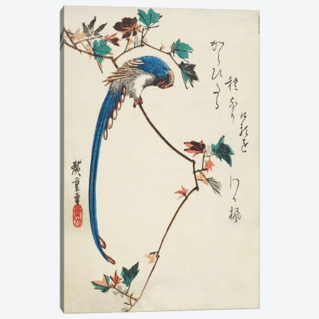 Blue Magpie On Maple Branch Canvas Print #13605} by Utagawa Hiroshige Canvas Print