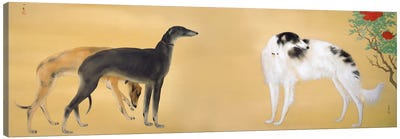 Dogs from Europe Canvas Art Print