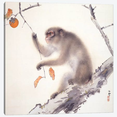 Monkey Canvas Print #13640} by Hashimoto Kansetsu Canvas Artwork