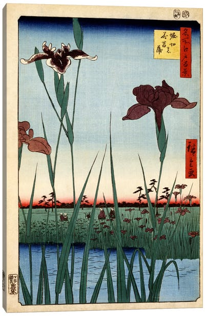 Horikiri no hanashobu (Horikiri Iris Garden) Canvas Art Print