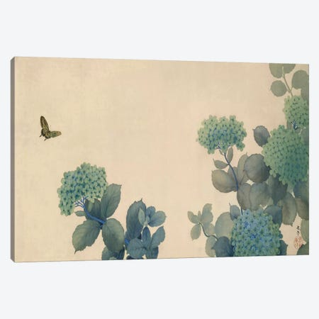 Hydrangeas Canvas Print #13684} by Hishida Shunso Art Print