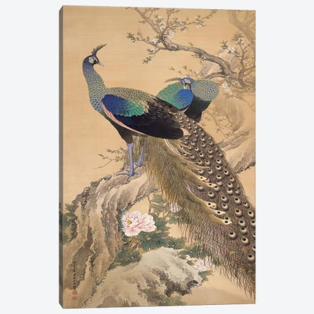 A Pair of Peacocks in Spring Canvas Print #13690} by Imao Keinen Canvas Art Print
