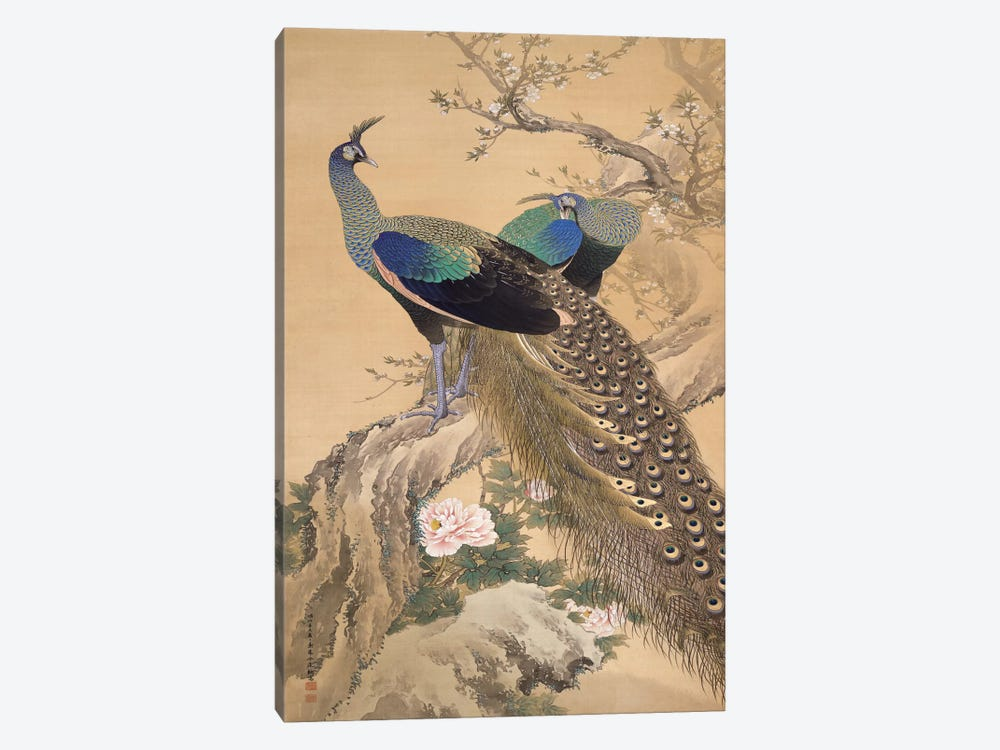 A Pair of Peacocks in Spring by Imao Keinen 1-piece Canvas Print