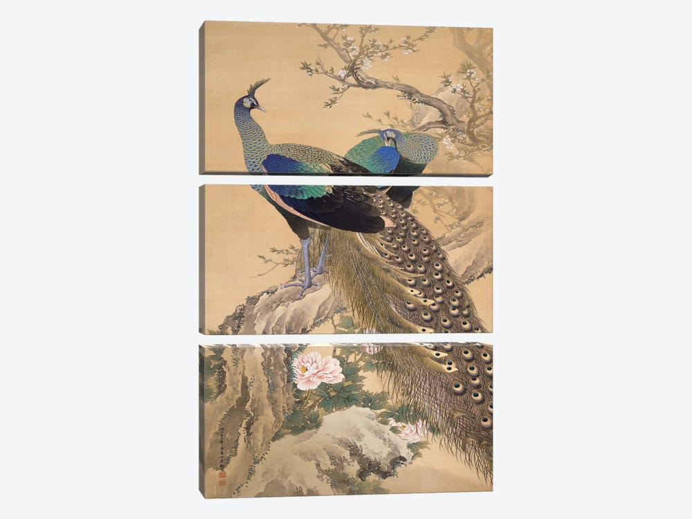 A Pair of Peacocks in Spring by Imao Keinen 3-piece Canvas Art Print