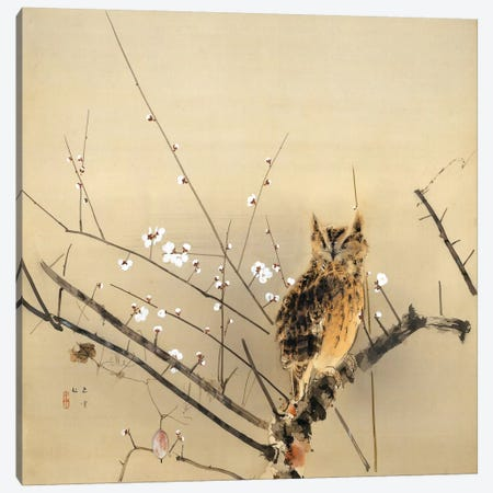 Early Plum Blossoms Canvas Print #13698} by Nishimura Goun Canvas Art Print