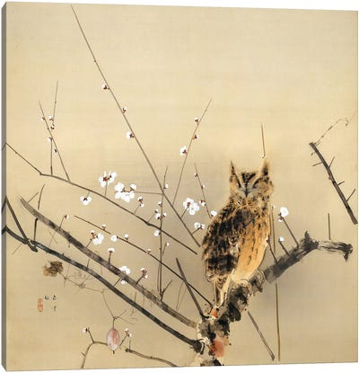 Early Plum Blossoms by Nishimura Goun Canvas Art Print