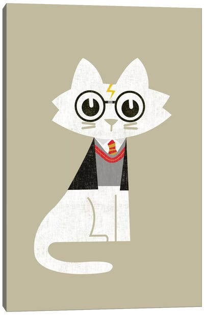 Mark Harry Potter by Budi Satria Kwan Canvas Artwork