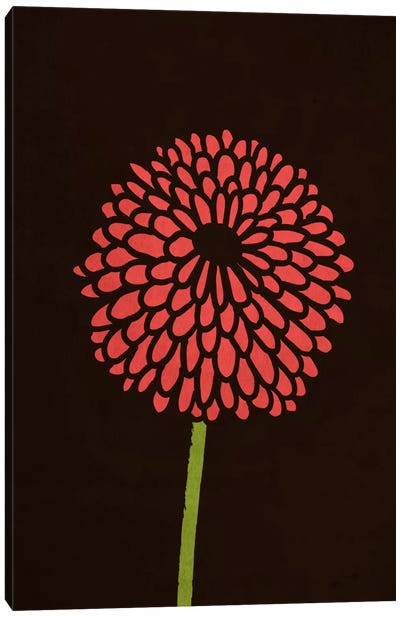 Still Life With Single Chrysanthemums Canvas Art Print