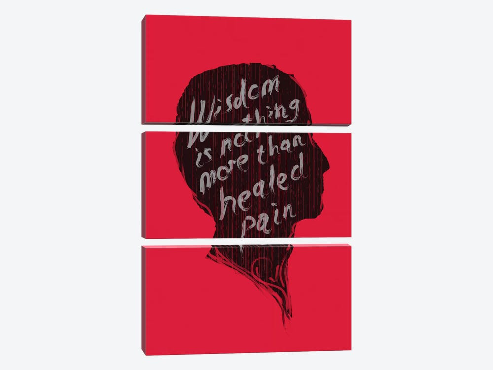 Wisdom by Budi Satria Kwan 3-piece Canvas Art