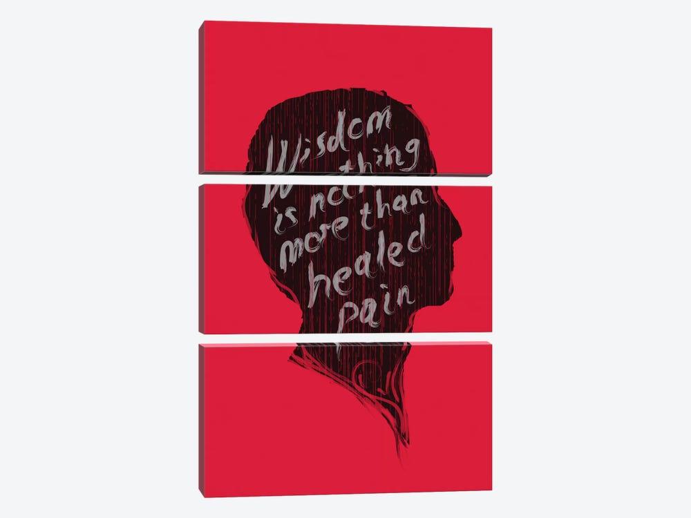Wisdom by Budi Satria Kwan 3-piece Canvas Art
