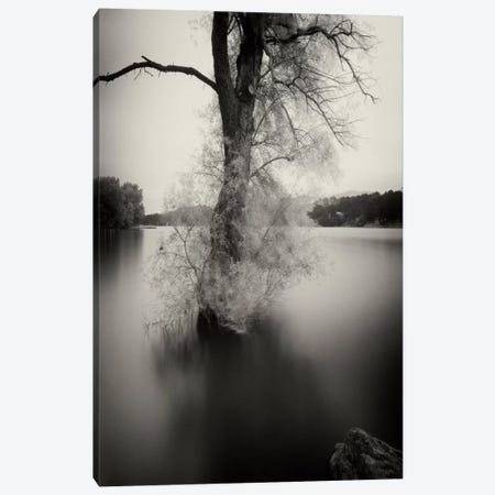 Surfactant Canvas Print #13894} by Geoffrey Ansel Agrons Canvas Art
