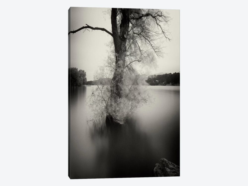 Surfactant by Geoffrey Ansel Agrons 1-piece Canvas Wall Art
