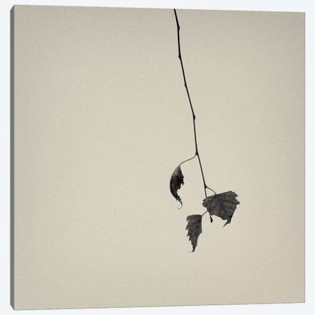 The Rumpus Canvas Print #13898} by Geoffrey Ansel Agrons Art Print