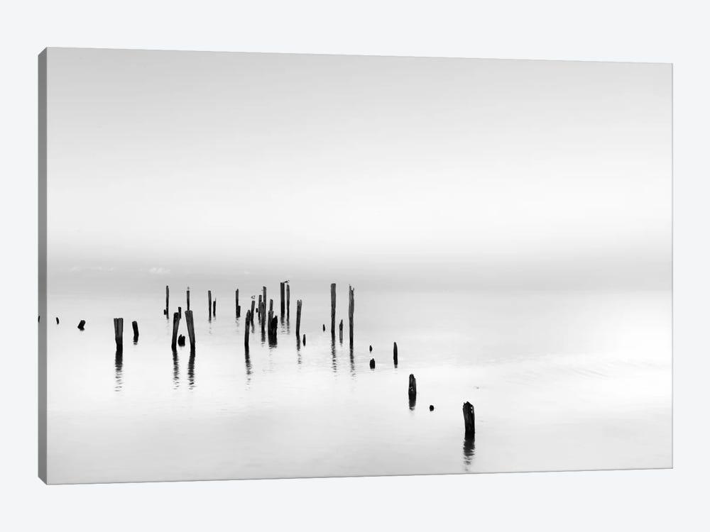 Four Gulls by Geoffrey Ansel Agrons 1-piece Canvas Print