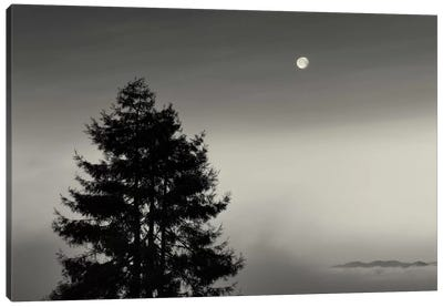 First There is No Mountain Canvas Print #13905