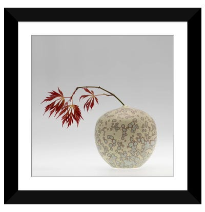 New Chinese Maple Framed Art Print