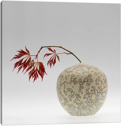 New Chinese Maple Canvas Art Print