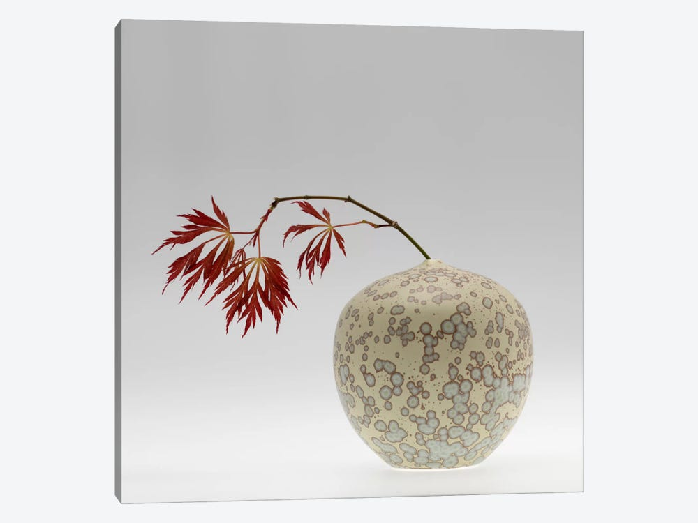 New Chinese Maple by Geoffrey Ansel Agrons 1-piece Canvas Wall Art