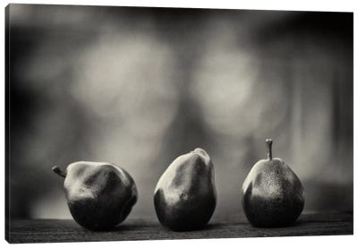 Three Red Pears on the Precipice Canvas Print #13907